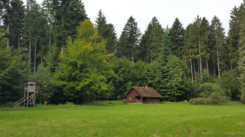 Schwarzwald_Panoramaweg_k-20170820_103730 (30)