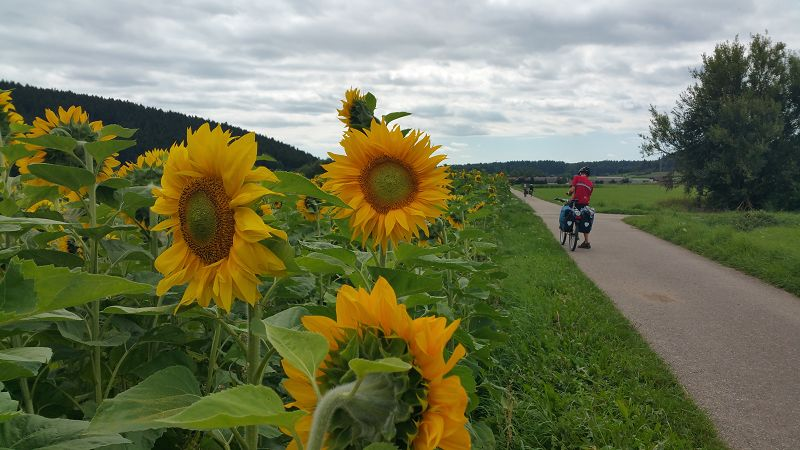 Schwarzwald_Panoramaweg_k (66)