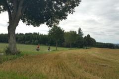 Schwarzwald_Panoramaweg_k (65)