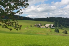 Schwarzwald_Panoramaweg_k (82)