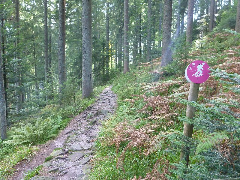 k-Westweg_Tag2 (30)