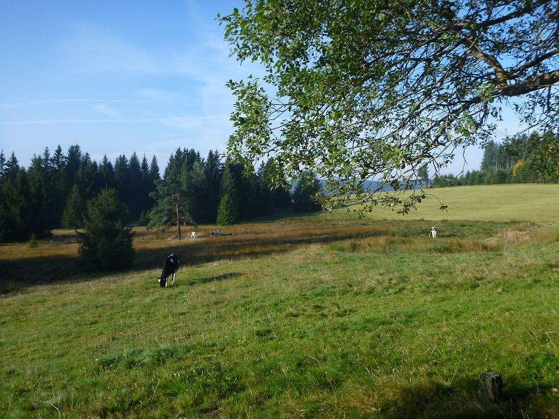 k-Westweg_Tag4 (2)