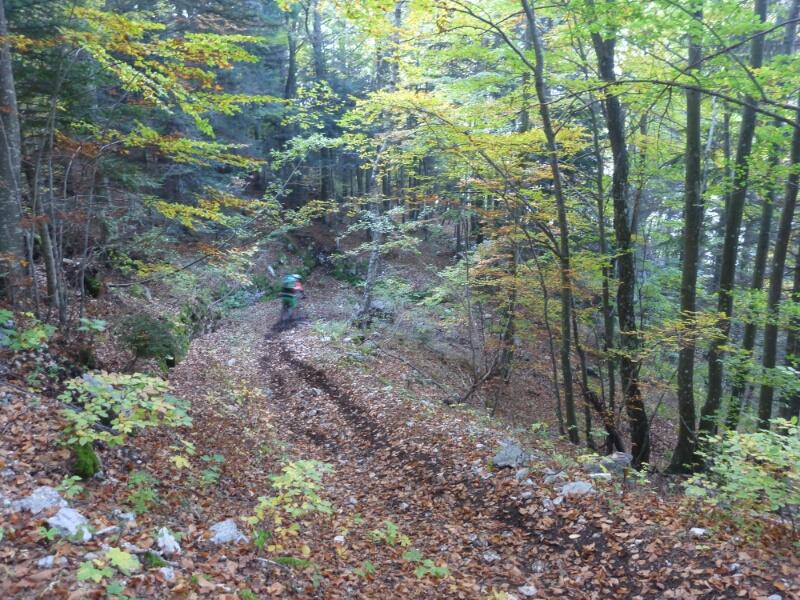 k-Friedensweg-Tag4-IMG_2017-10-05_20.44.47~01