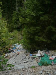 Müllentsorgung I
