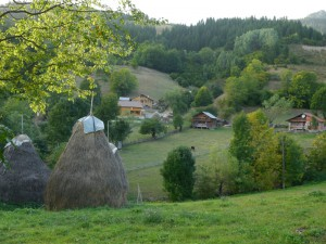Reke e Allages - Guesthouse Ariu