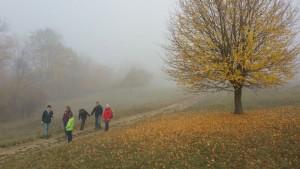 Auf dem Weg zur Ruine Raube im Nebel