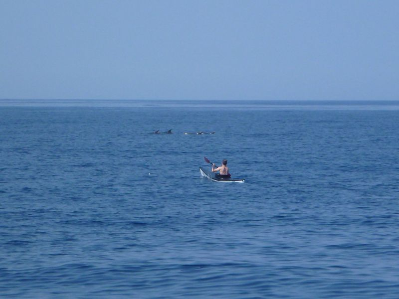 Lu bei den Delfinen