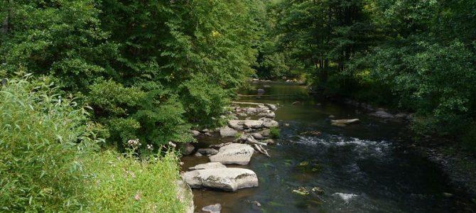 Oberpfälzer Wald – Untermurnthal – Felsiger Knock