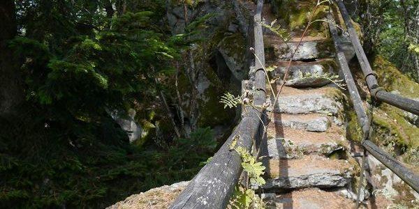 Oberpfälzer Wald – Murnthal – Schwarzwihrnberg Radl-Wander-Kombi